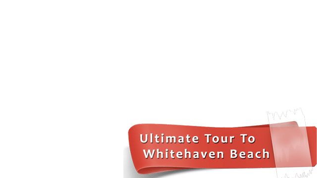 Whitehaven Express Day Tour