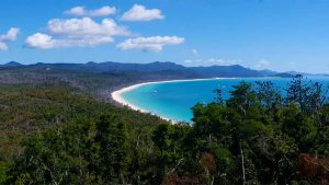 New South Whitehaven Beach Lookout
