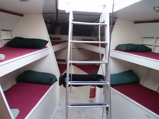 bunk beds on apollo