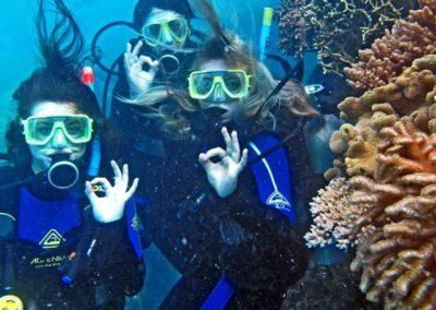 scuba-divers-by-coral