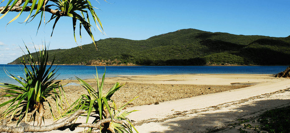 Airlie Beach Tours