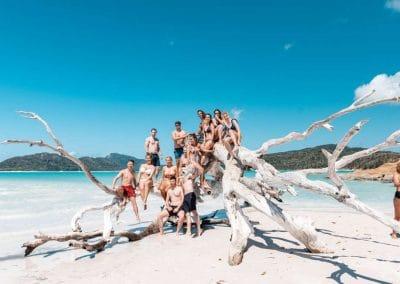 Whitehaven Beach hangout (Medium)