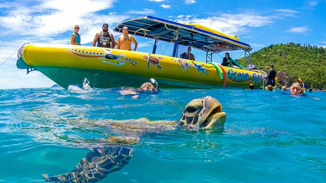 Ocean rafting with a turtle