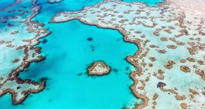 Heart reef viewd on a Whitsundays scenic flight