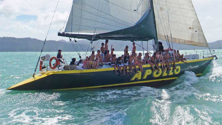 apollo whitsundays includes a scuba dive