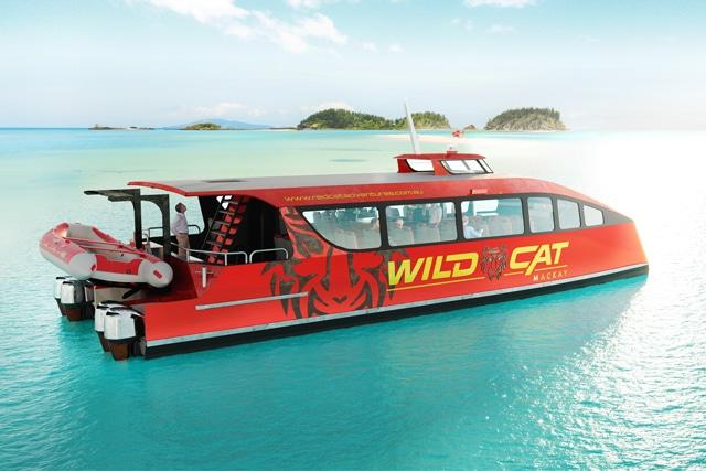 Wildcat Mackay